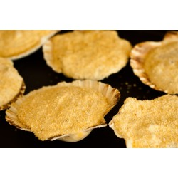 Coquilles Saint-Jacques à la Bretonne 2X100G - Plats cuisinés - MonBeauPoisson.fr