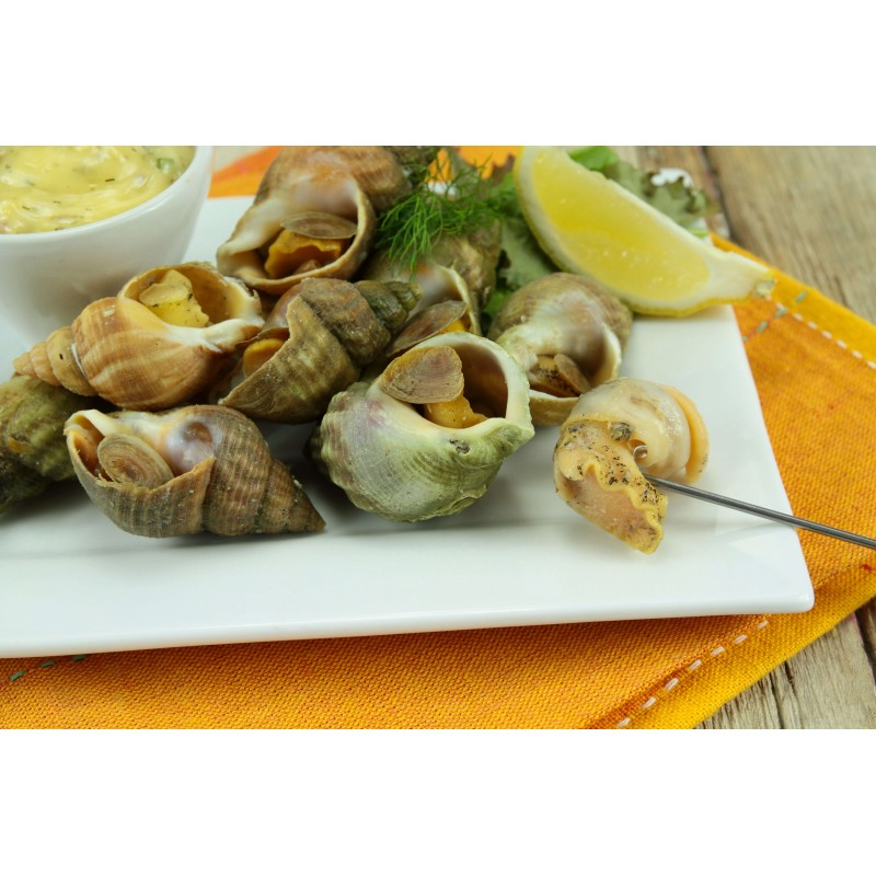 Bulots Cuits - Coquillages - MonBeauPoisson.fr